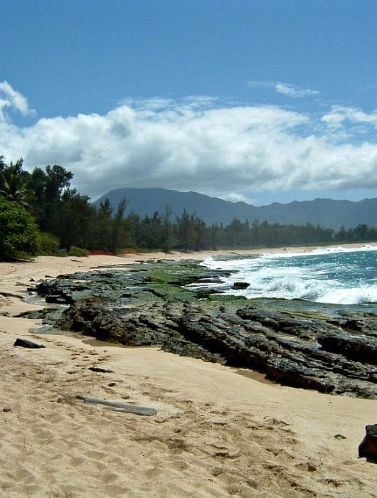 a Hawaiian sandy beach with a rocky shore and ocean on one side and trees on the other