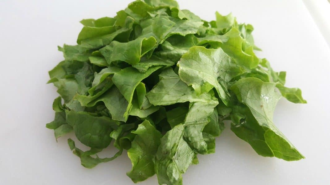 a pile of beautiful green lettuce torn into small pieces