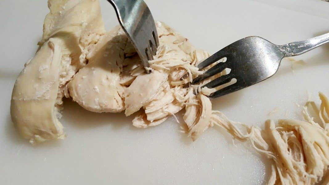 shredding chicken with two forks for chimichangas