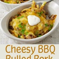 Cheesy BBQ Pulled Pork Fries Recipe for Two