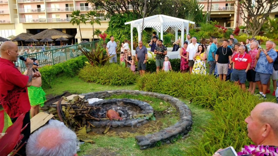 a pig cooking under ground at a luau