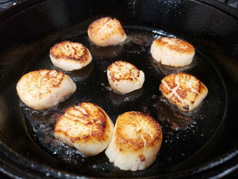 8 sea scallops searing in a cast iron pan