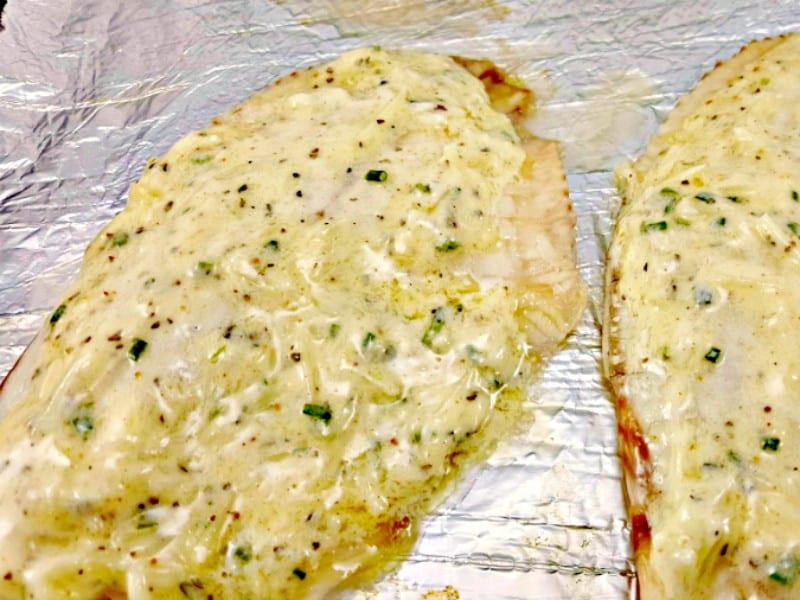 cheese mixture spread on tilapia filets