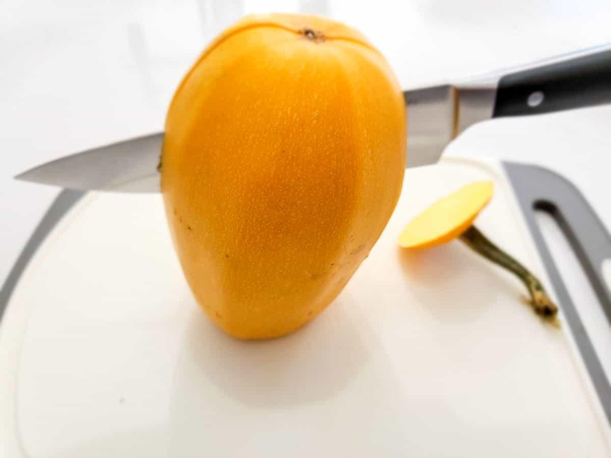 a knife cutting a spaghetti squash in half.